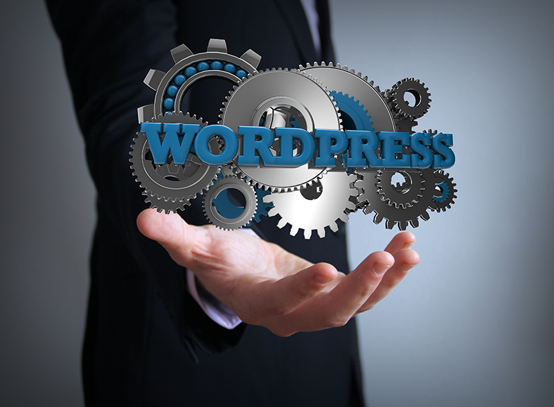 wordpress gears businessman